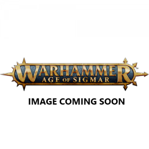 Games Workshop (Direct) Age of Sigmar  Gloomspite Gitz Loonboss with Giant cave Squig - 99810209012 - 5011921033416