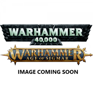 Games Workshop (Direct) Warhammer 40,000   Age of Sigmar  Age of Sigmar Direct Orders Herald of Tzeentch on Disc - 99819915026 - 5011921063987