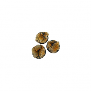 Micro Art Studio   Shale Bases Shale Bases, 50mm Round (2) - B00231 - 5900232354788
