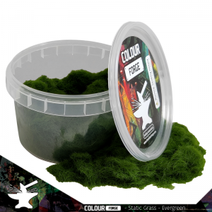 The Colour Forge   Sand & Flock Static Grass - Evergreen (275ml) - TCF-BAS-022 - 5060843101055