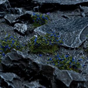 Gamers Grass   Plants & Flowers Blue Flowers - GGF-BL - 738956789914